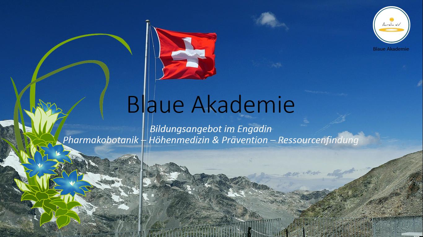 BLAUE AKADEMIE -Bildungsangebot im Engadin-Schweiz